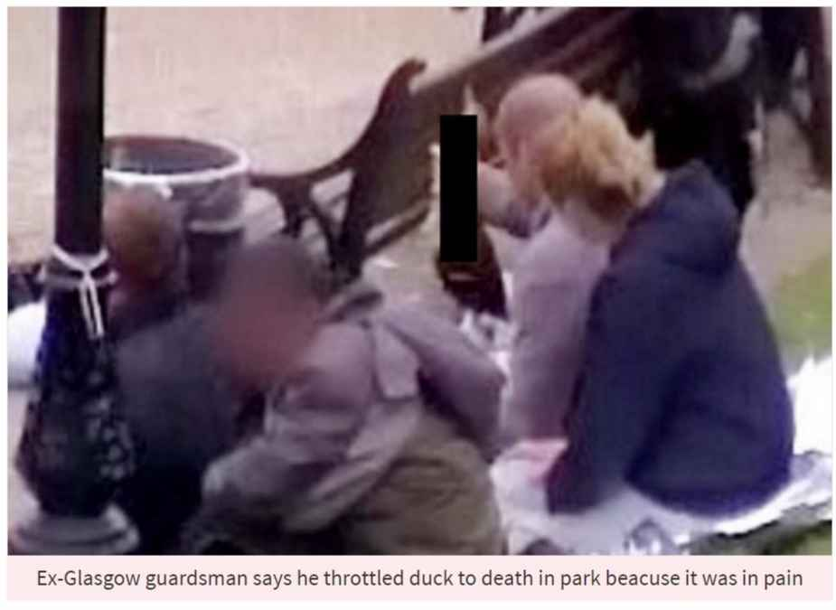 01 Ex Glasgow guardsman says he throttled duck to death in park beacuse it was in pain PhotoC GETTY