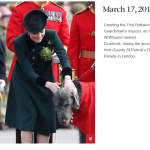 Greeting the First Battalion Irish Guardsmens mascot an Irish Wolfhound named Domhnall during the annual Irish Guards St Patricks Day Parade in London.