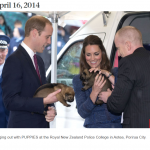 Hanging out with PUPPIES at the Royal New Zealand Police College in Aotea Porirua City.