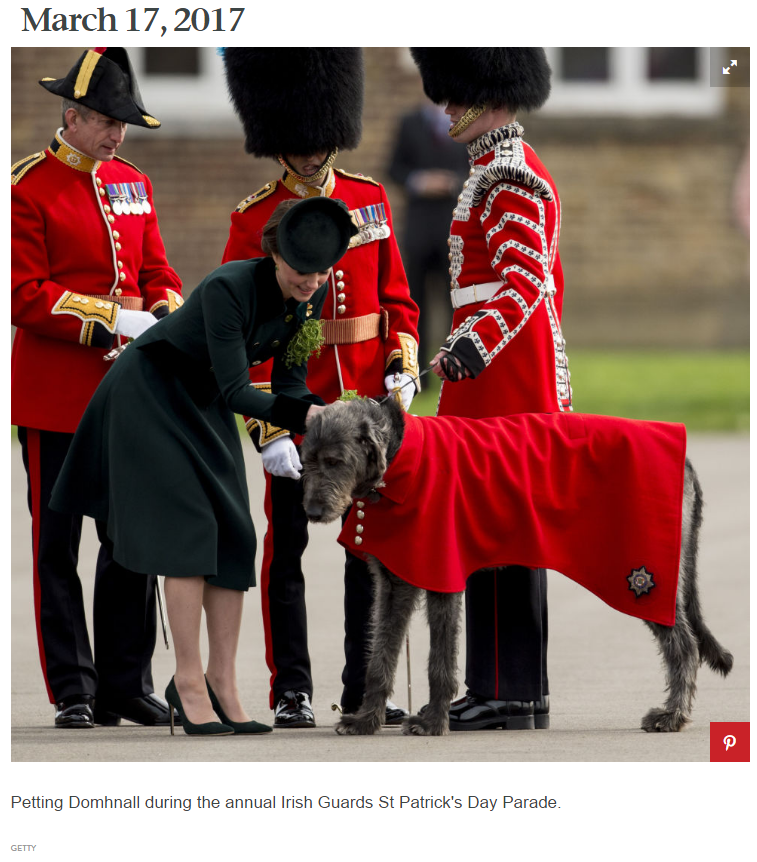Petting Domhnall during the annual Irish Guards St Patrick's Day Parade
