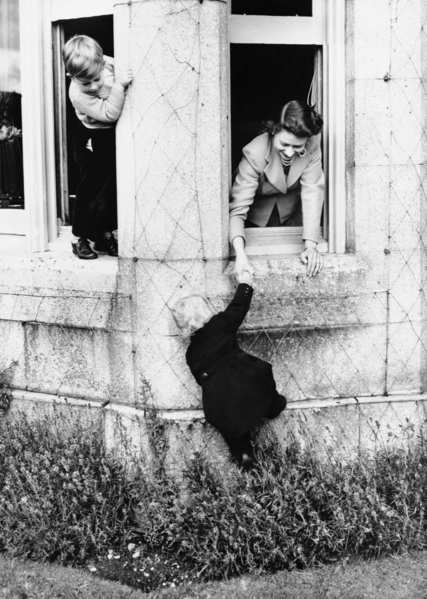 [Queen Elizabeth II, right, shown playing with her two children, Prince Charles, left, and Princess Anne, climbing, at Balmoral Castle the Royal Residence on the River Dee, May 1, 1952, West Aberdeenshire, Scotland. (AP Photo)] *** []