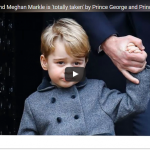 Prince Harrys girlfriend Meghan Markle is totally taken by Prince George and Princess Charlotte