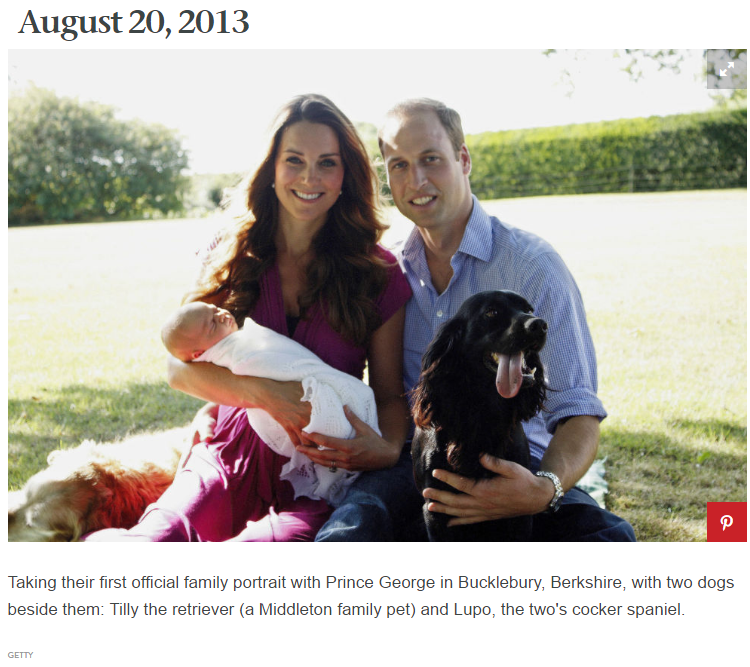 Taking their first official family portrait with Prince George in Bucklebury, Berkshire, with two dogs beside them