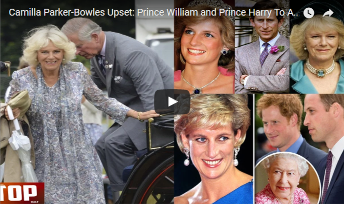 Prince William and Prince Harry To Appear In Princess Diana Documentry