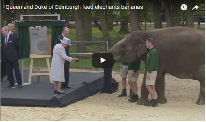 Queen and Duke of Edinburgh feed elephants bananas