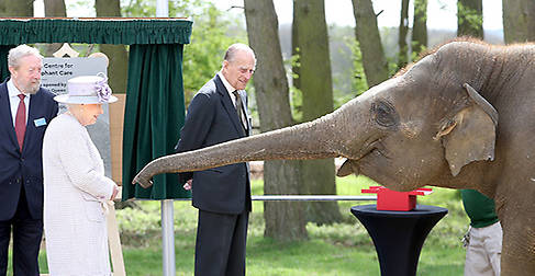 The Queen and Prince Philip met Donna the elephant Photo (C) GETTY IMAGES