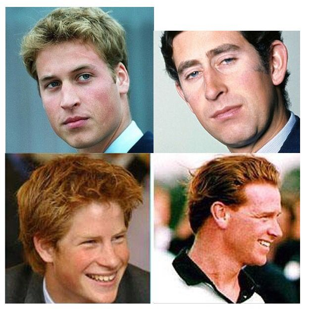 bbc sparked uproar that prince harry is not prince charles s son dianalegacy latest update news images videos of british royal family dianalegacy
