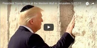 Trump Walked up to Israels Western Wall and Did the Unthinkable
