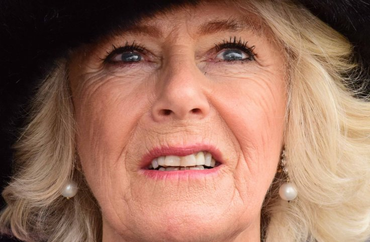 Camilla, Duchess of Cornwall watches a fly-past during a visit to RAF LeemingAnthony Chappel-Ross Photo (C) WPA Pool, Getty Images