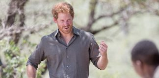 Prince Harry is pictured with a Ranger Tracker dog as he visits the South African Wildlife College on December 2, 2015 in Hoedspruit, South Africa