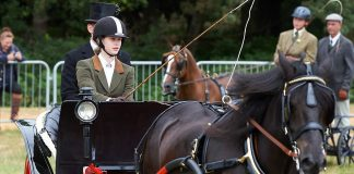 Prince Philip attended the event where his granddaughter Lady Louise Windsor, 13, pictured, showed off he skills in the British Driving Society Annual Show