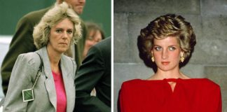 Princess Diana told how she took on her love rival Camilla Barker Bowles at a party Photo C GETTY