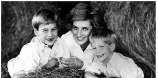 Princess Diana, Prince William, Prince Harry, Prince George, Princess Elizabeth Diana Photo (C) GQ, GETTY IMAGES