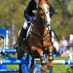 Toytown spent his retirement at the royals Gatcombe Estate Photo C PA