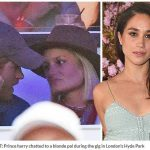 1 Prince harry chatted to a blonde pal during the gig in Londons Hyde Park