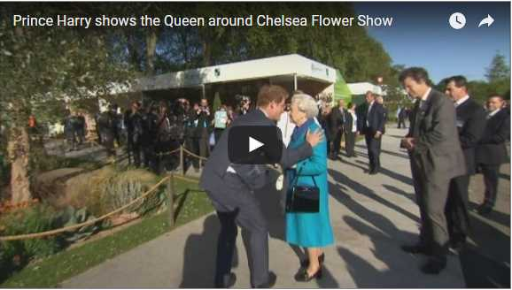 Best Moments Prince Harry shows the Queen around Chelsea Flower Show