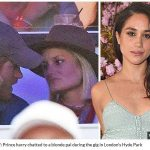 Prince Harry chatted to a blonde pal during the gig in Londons Hyde Park