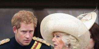 Prince Harrys silence should not be interpreted as an unwillingness to mourn his mother but a