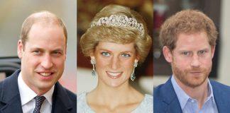 Prince William Duke of Cambridge Princess Diana Prince Harry Photo C GETTY IMAGES