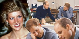 Prince William and Prince Harry pay tribute to Princess Diana in an ITV documentary Photo (C) ITV