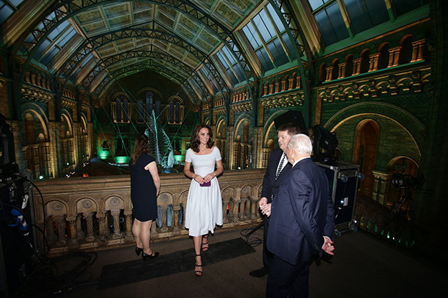 The Duchess pictured inside the iconic Hintze Hall Photo C GETTY IMAGES