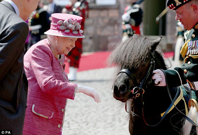 Pony tries to eat the Queens flowers at Stirling Castle