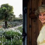 August 31st 2017 will mark 20 years since the tragic death of Princess Diana. Prince William and Harrys mother is still widely remembered Photo C GETTY IMAGES