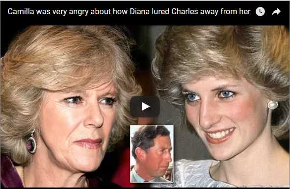 Camilla was very angry about how Diana lured Charles away from her