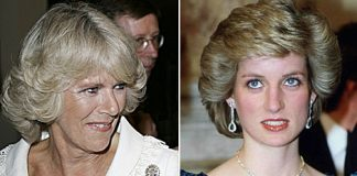 It is a priceless piece of jewellery that Princess Diana loved to show off Photo C GETTY IMAGES