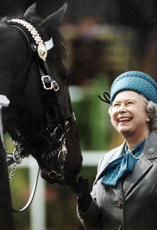 Queen Elizabeth II Photo (C) GETTY IMAGESiding Horse Photo (C) GETTY IMAGES
