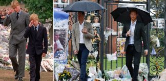 The pictures that show Harry and William at Diana memorial 20 years apart Photo C PA REX