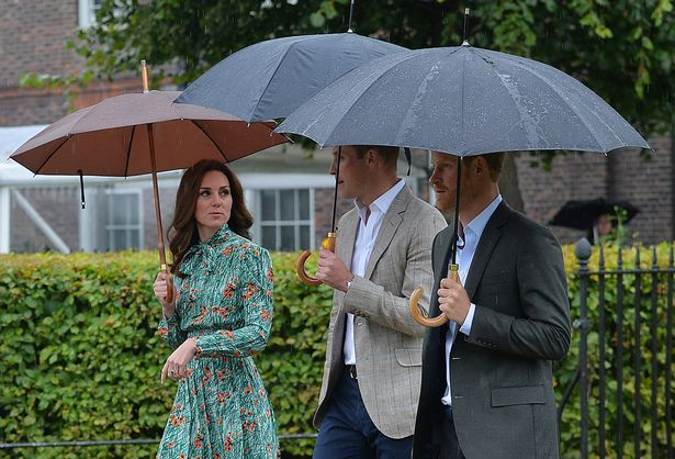 The three head to the White Garden to mark the 20th anniversary of the Princes' mother's death (Image PA)