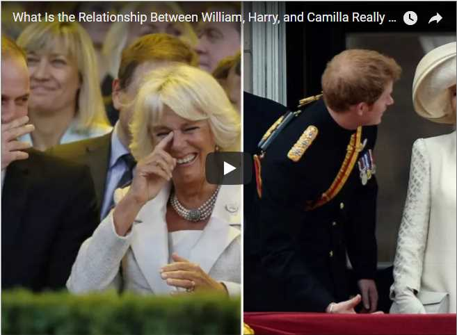 What Is the Relationship Between William Harry and Camilla Really Like