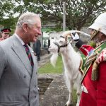 File photo dated 11/07/17 of the Prince of Wales meeting Lance Corporal Shenkin III and his handler Sgt Mark Jackson, which has died aged 7. PRESS ASSOCIATION Photo. Issue date: Wednesday September 27, 2017. See PA story DEFENCE Goat. Photo credit should read: Matt Cardy/PA Wire