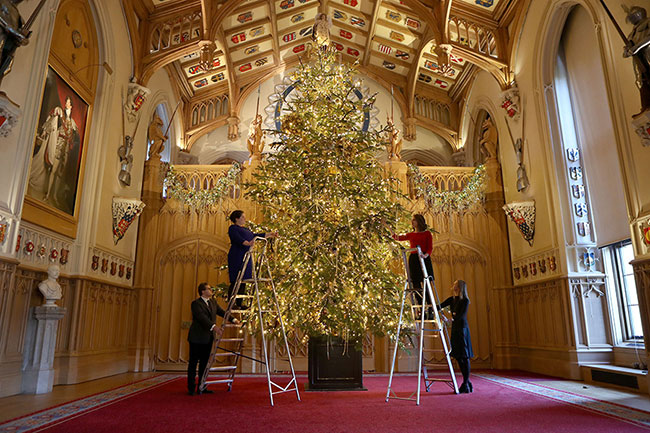 Members of staff decorated the Christmas tree at Windsor Castle Photo (C) GETTY