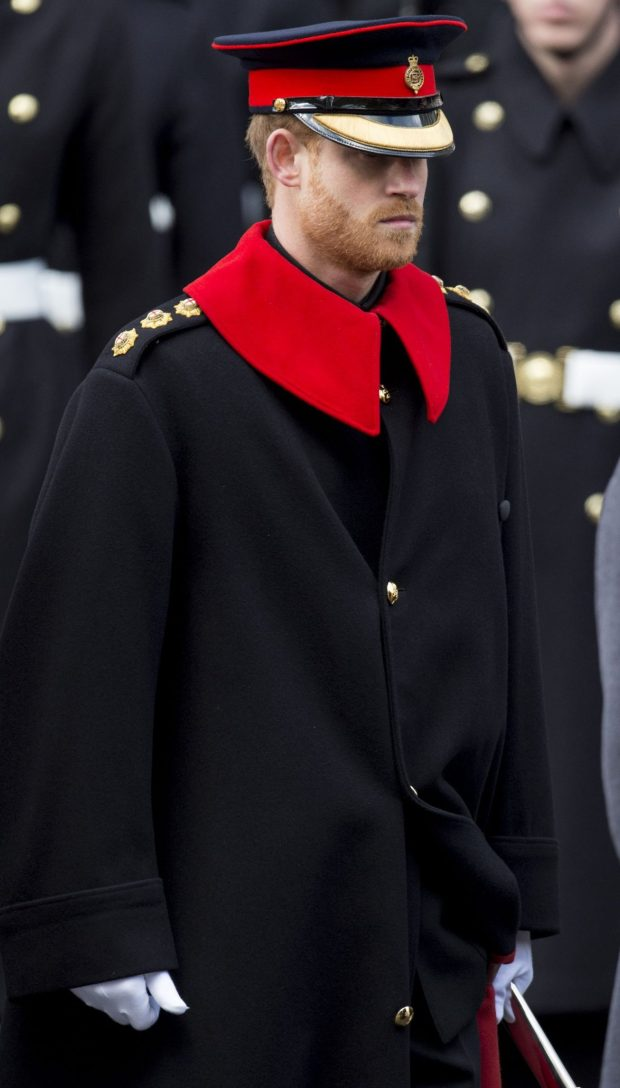 Prince Harry wore the officer uniform of the Blues and Royals today Picture Getty Images
