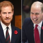 Prince William and Prince Harry Photo C ADAM DAVY PA WIRE AP KEN GOFF ROTA GOFFPHOTOS COM