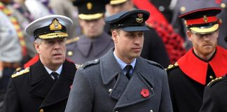 Britain's Prince William (centre), Prince Andrew (left) and a bearded Prince Harry (right) take part in the Remembrance Sunday Cenotaph service in London
