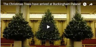 Buckingham Palace has gone totally EXTRA with the decorations this year