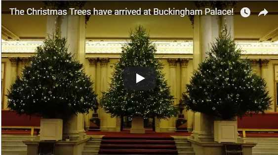 Buckingham Palace has gone totally EXTRA with the decorations this year Photo C GETTY