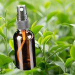 Tea tree oil is not your usual everyday item Photo C GETTY