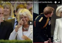 What Is the Relationship Between William, Harry, and Camilla Really Like