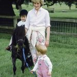 Diana hoped Harry would be able to step out of Williams shadow Photo C GETTY