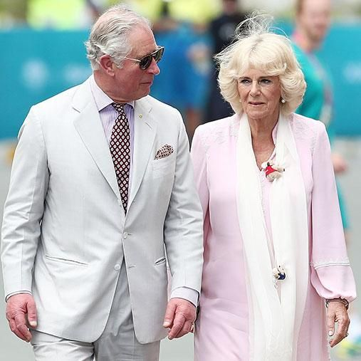 A report claims Camilla was left utterly jealous over Charles meeting with Terri Photo Getty