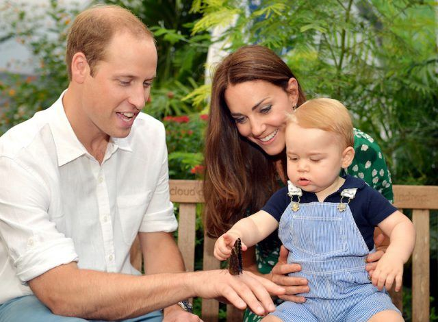 Prince William, Kate Middleton and Prince George looking at a butterfly.
