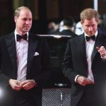 Prince Harry and Prince William beamed on the red carpet Photo (C) GETTY