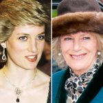 Princess Diana She was given a diamond brooach with the badge of the Prince of Wales on it Photo (C) GETTY