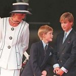 Princess Diana with young Prince Harry and Prince William Photo (C) Johnny Eggitt, AFP, Getty Images