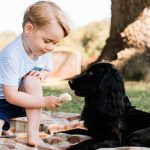 Kensington Palace released this image for Prince George's third birthday (Image PA)