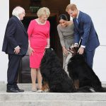Meghan and Harry were delighted to meet Bernese Mountain dogs Brod and Sioda (C) PA